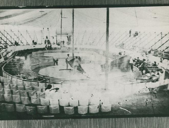 Montagem do Circo-Família Americano, onde nasceu o Palhaço Piolin. ca 1918. Autor não identificado.